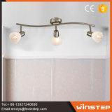 Neues moderner Entwurfs-Eisen u. Glas-LED-Scheinwerfer-Lampe für Hauptdekoration-Arten