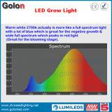 제조자 IP65 방수 고성능 플랜트는 점화 IP65 공장 200W LED를 증가한다