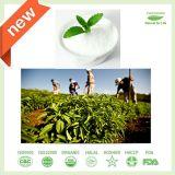 Выдержка Stevia поставщика изготовления Китая органическая