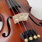 Скрипка музыкальных аппаратур с сбыванием аргументы за скрипки