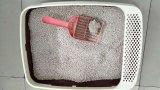 Dust Less Strip White Cat Litter-Cat Tiliet Scoop