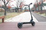 Neuer Entwurfs-Doppelbewegungsfaltbarer Falz-elektrisches Fahrrad