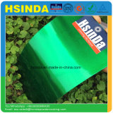Decoração interior Luminous Candy Green Clear Paint Powder Coating