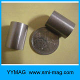 Магниты SmCo цилиндра магнита кобальта самария высокого качества