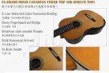 Гитара Smallman профессионального шнура ранга 7 классическая (SC3007S)