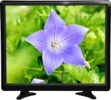 Плоское экран LCD цвет LCD СИД TV квадрата 19 дюймов
