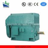moteur à courant alternatif Triphasé à haute tension de refroidissement air-air de série de 6kv/10kv Ykk Ykk5602-8-630kw