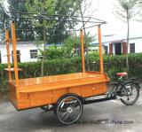 熱い販売のフローズンヨーグルト機械工場直売のための電気コーヒーバイクが付いている移動式食糧カート