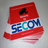 Stampa di plastica variopinta di vendita calda personalizzata della scheda di Coreflute