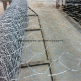 Mercado 2X1X1 de Malaysia, 4X1X1 PVC Gabion/revestido Wiremesh Gabion (XMA05)