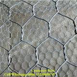 2 * 1 * 1m PVC PVC Revêtu Gabion / Gabion Mesh (XM36)