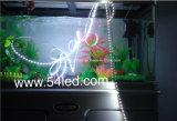 설치된 수족관을%s Quliaty 높은 LED 지구