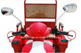 Vendas de Fábrica Novo Triciclo Elétrico de Alta Qualidade
