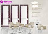 شعبيّة [هيغقوليتي] صالون أثاث لازم مرآة حل صالون كرسي تثبيت ([2033])