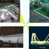 심천 더 나은 100-240V 5050SMD RGB LED 지구 보장 2 년