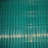 Escalada revestida do PVC de China anti que cerc com cor verde