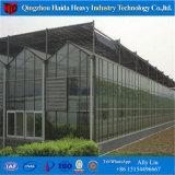 De Serre van het Glas van de Levering van de Fabrikant van China met Hydroponic Systeem