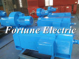 moteur électrique de C.C d'utilisation de presse de refoulage de 300V 250kw