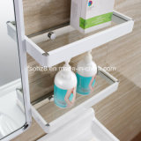 Moderne Badezimmer-Eitelkeit des Edelstahl-2017 mit Regal