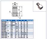 De snelle Pneumatische Montage Pcf/PC/Poc van de Aansluting van de Fabriek van China