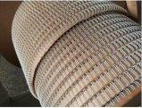 Двойной провод HS1688 связывающего кольца металла петли
