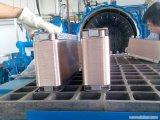 Fabricante cubierto con bronce 304/316L excelente del cambiador de calor de la placa