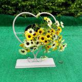 Bacs de fleur s'arrêtants de stand de planteur de décoration d'Outdoor& de forme d'intérieur de coeur
