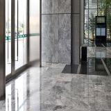 Silver Sable des planchers de marbre pour salle de bains/hôtel