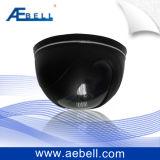 appareil-photo de petite taille de dôme de jour/nuit de la couleur 420tvl (BL-CB420)
