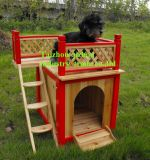 Chambre de chien (QZD8079)