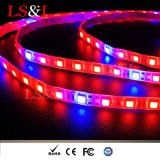 LED Strip Light Waterproof DIY Seedling Lighting Graden Light