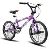 Freestyle moto / vélo (WTB102001)