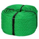 De kleurrijke PE pp Nylon Kabel van het Lood van Danline van de Polyester