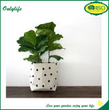 Planteur réutilisable amical de jardin de tissu de feutre d'Onlylife Eco