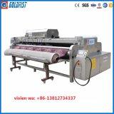 De volledig Automatische Wasmachine van het Tapijt