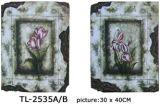 Gerahmte Kunst (TL-2535AB)