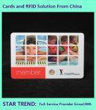 Het Gemaakte Plastiek van het Zwembad Kaart met het Magnetische Af:drukken van de Kleur van de Streep Volledige