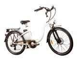 26 Zoll Standard, elektrisches Stadt-Fahrrad (HQLCYCLE1003)