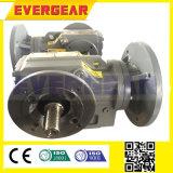 Mit Flansch befestigter schraubenartiger Kegelradgetriebe-Motor/Getriebe