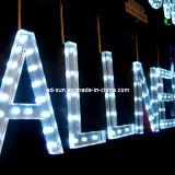 아크릴 분명히된 LED 표시 광고