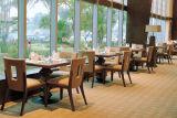 Restaurant moderne de nouveaux meubles pour Étoiles (EMT-SG40)