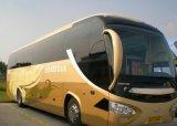 贅沢な乗客バス