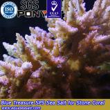 수족관 바다 합성 바다 소금