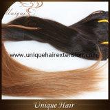 毛の拡張のOmbreクリップ