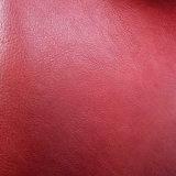 [هيغقوليتي] [بو] جلد لأنّ حقيبة يد وأحذية ([هسك129])