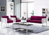 Moderner Typ allgemeine Sofa-Lagerung für Unterstand