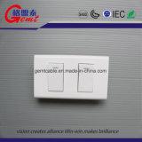 Modèle de la plaque de face de mur de plot de RJ45 de qualité 86*86mm pour le câblage de gestion de réseau