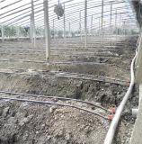 PE капельного орошения труба для посева томатов