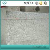Losa de granito, baldosas de granito G603 de la luz de Padang, granito gris