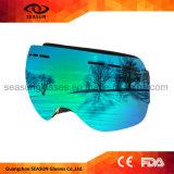 Mini het Skien van de Glazen van de Beschermende bril van de Magneet van de Boten van de Motor van de Waterski van de Beschermende brillen van de Boot van de Ski Zonnebril Googles met het Embleem van de Douane